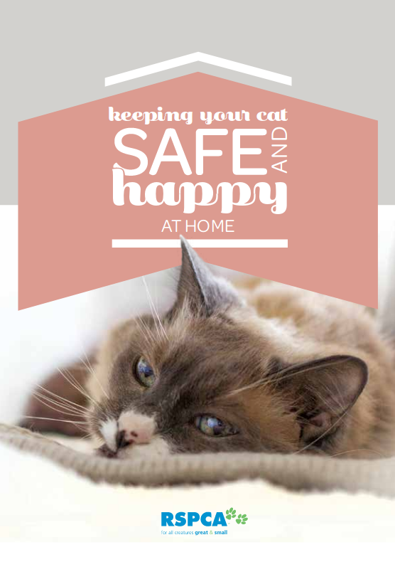 keeping-your-cat-safe-and-happy-at-home-cover.png